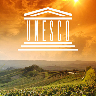 Barolo & Barbaresco Doyouwine Tour (UNESCO World Heritage Site)