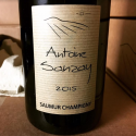 "Saumur Champigny 2015 ""Domaine"""